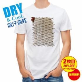 Tシャツ ローチのウロコ 釣り 魚 ルアー 送料無料 メンズ 文字 春 夏 秋 インナー 大きいサイズ 洗濯