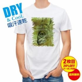 Tシャツ マアジ 鉄錆 釣り 魚 ルアー 送料無料 メンズ ロゴ 文字 春 夏 秋 インナー 大きいサイズ 洗濯