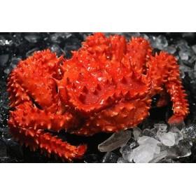 浜茹で花咲がに活時1kg以上×1尾