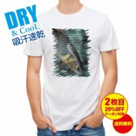 Tシャツ アユの追い星 釣り 魚 ルアー 送料無料 メンズ ロゴ 文字 春 夏 秋 インナー 大きいサイズ 洗濯