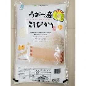富山県うおづ産米こしひかり 5kg 白米