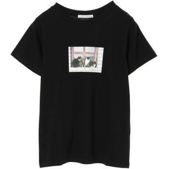 【5,000円以上お買物で送料無料】フォトTee