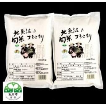 【令和元年産 新米先行受付】北魚沼の旬米コシヒカリ【精米】 2kg×2