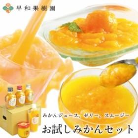 みかん ジュース ゼリー スムージー 早和果樹園 お試しみかんセットR 飲むみかん