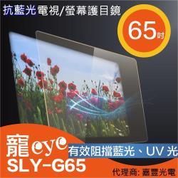 寵eye  65吋 抗藍光液晶電視/螢幕護目鏡 SLY-G65