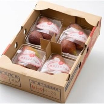 福岡を代表するブランドいちじく!とろける濃蜜な甘さ濃厚な味わい「とよみつひめ」