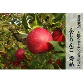 H017 ふじりんご(サンふじ)約5kg(秀品)
