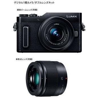 パナソニック ミラーレス一眼カメラ ルミックス GF90 ダブルレンズキット ブラック DC-GF90W-K + HAKUBA デジタルカメラ液晶保