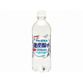 サンガリア  伊賀の天然水強炭酸水 ペット 500ml x24 4902179019141