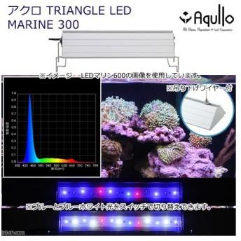 アクロ TRIANGLE LED MARINE 300 20000K Aqullo Series 関東当日便