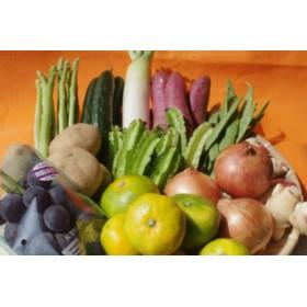 季節の野菜詰め合わせの定期便10回(上旬)