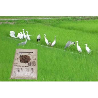 【新米】無農薬 生き物いっぱいの田んぼでとれたお米(白米)4.5kg