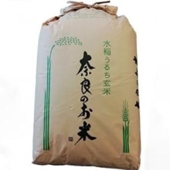 ひのひかり(奈良県天理産) 玄米30kg【令和元年産】(一等米)