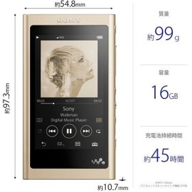 新品 ウォークマン Aシリーズ A50シリーズ 本体 ワイヤレス イヤホン付属 SONY NW-A55WI NM(ゴールド)(16GB)