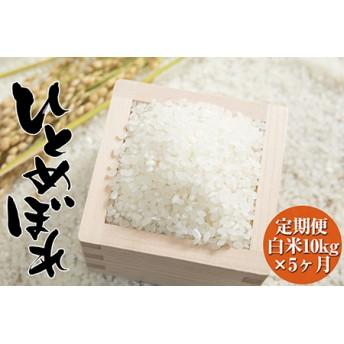 【新米予約】海の見える農園で作った白米50㎏(10kg×5ヶ月定期便)