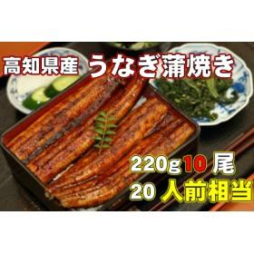 高知県産 うなぎ蒲焼き 220g10尾セット Y-8