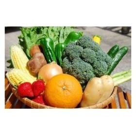 【12~14品】むなかた旬のお任せセット(野菜・フルーツ)_ST1105