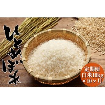 【新米予約】海の見える農園で作った白米100㎏(10kg×10ヶ月定期便)