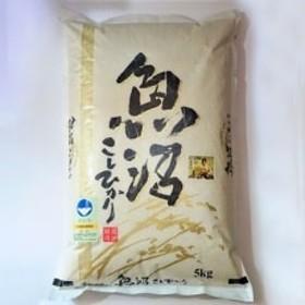【令和元年産 新米先行受付】農家直送 魚沼産特別栽培コシヒカリ 5kg×2袋