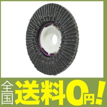 ヤナセ SG ヤナセTOP [ファイ]100 Z#100 10個入 SG-GT100Z6