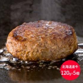 【送料無料】 北海道産牛ハンバーグ 120g×5個 SS-015 ギフト お歳暮 お取り寄せ 特産 手土産 お祝い ギフト 御歳暮 セット おすすめ 贈