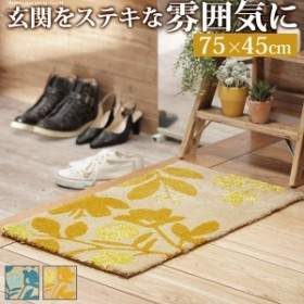 玄関マット 室内 洗える 玄関マット 〔ブランシュ〕 75x45cm 屋内 長方形 柄 日本製