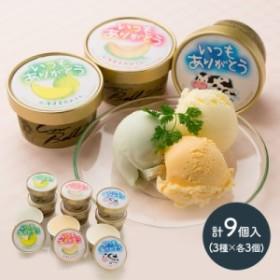 【送料無料】 いつもありがとうラベル 十勝 アイスクリーム 3種 セット 計9個 北海道産 赤肉メロン 青肉メロン ミルク アイス 箱入り プ