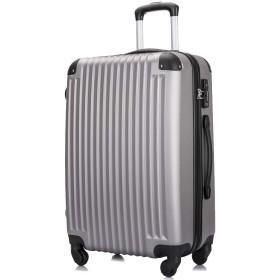 3年保証 超軽量スーツケース TSAロック搭載 機内持込み ファスナータイプ ダイヤル式 保管カバー付 グレー Lサイズ