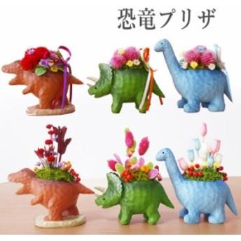 プリザーブドフラワー ギフト ジュラシック プリザ 恐竜 退職祝い 送別 結婚記念日 誕生日プレゼント 女性 バラ お礼 遅れてごめんね 敬
