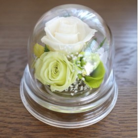 小さなプリザーブドフラワー グリーン 小さめアレンジ 仏花 お供え花 ペット用にも ドーム入り