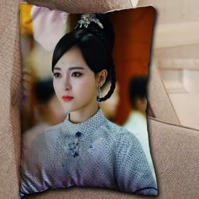 送料無料 中国ドラマ 王女未央 枕 孤高のはな 美人心計 武則天 蘭陵王 など