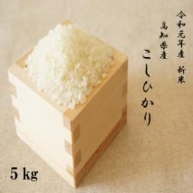新米 米5kg 送料無料 食品  令和元年産 高知コシヒカリ5kg ※北海道・沖縄の方別途送料756円かかります。