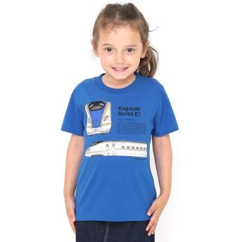 (グラニフ) graniph コラボレーション キッズ Tシャツ かがやき (でんしゃのずかん) (マゼランブルー) キッズ 130 (g28) #おそろいコーデ