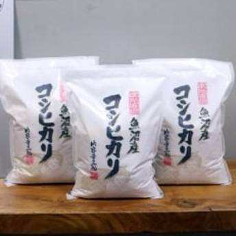 2019年10月発送開始『定期便』【無洗米】お米マイスター厳選魚沼産コシヒカリ100%9kg 全6回