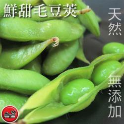 [老爸ㄟ廚房]大規格外銷等級原味毛豆 2包組(1000g/包)