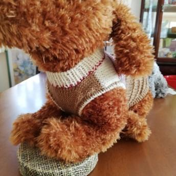手編みペット服 Lサイズ