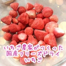 【いちご農家がつくった】国産フリーズドライいちご(固形・20g)