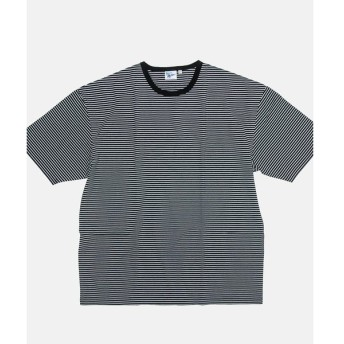 BEAUTY&YOUTH UNITED ARROWS / ビューティ&ユース ユナイテッドアローズ 【別注】 <Robert P Miller> NEW BORDER TEE/Tシャツ