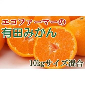 [厳選]エコファーマーの有田みかん 10kg(サイズ混合)