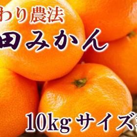 こだわり農法の有田みかん10kg(サイズ混合)(サイズ混合)