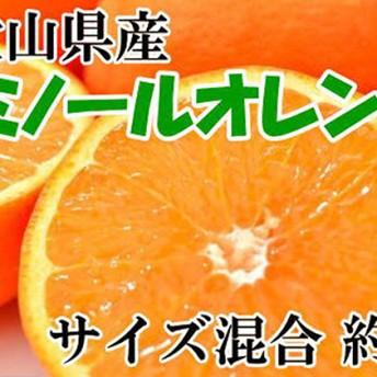 和歌山有田産セミノールオレンジ約5kg(サイズ混合)(サイズ混合)