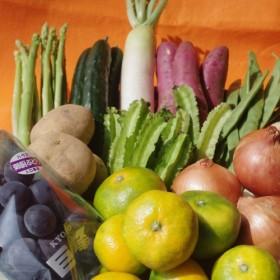 【I0-006】季節の野菜詰め合わせの定期便10回(上旬)