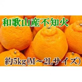 【春柑橘の代表格】和歌山の不知火(デコポン)約5kg