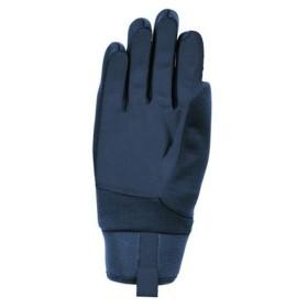 テラノバ(Terra Nova) ファルコングローブ 21FLG-GY 手袋  (Men's、Lady's)