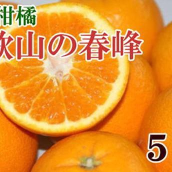 和歌山で生まれた春にぴったりの柑橘「春峰」約5kg(1箱)