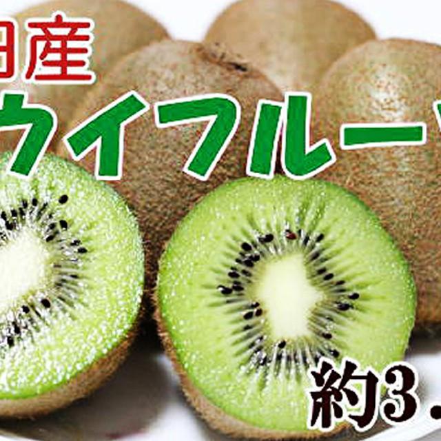 有田産完熟キウイフルーツ 約3.6kg 秀選品(1箱(M~3L))