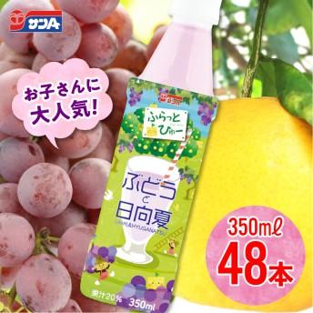 サンAぶどうと日向夏48本セット(24本入×2ケース)