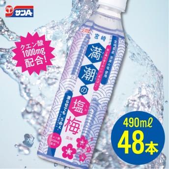 サンA満潮の塩梅48本セット(24本入×2ケース)