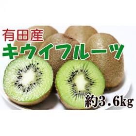有田産完熟キウイフルーツ 約3.6kg 秀選品