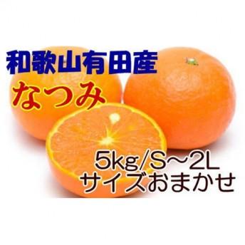 [希少春みかん]和歌山産なつみ 約5kg・秀品